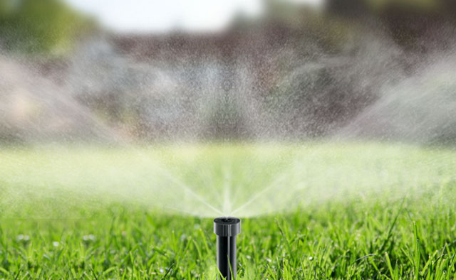 Remotely water the lawn